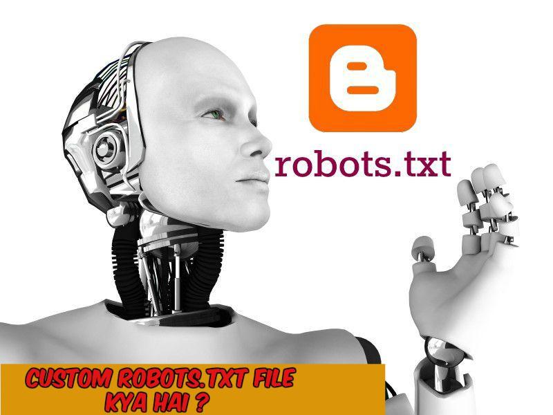 Custom Robots.txt File Kya Hai ?